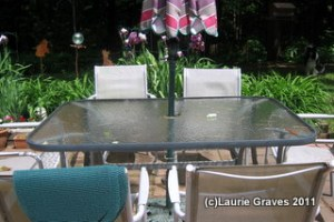 The patio table and chairs