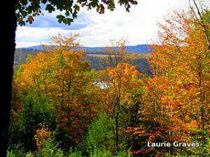A glimmer of Torsey Lake