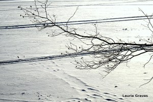 The snowy Narrows