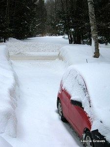 Our tunnel of a driveway