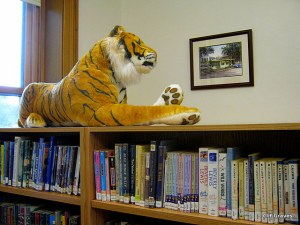 Another guardian of the library