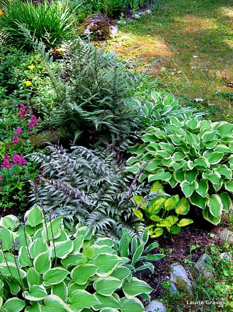It is now up to the hostas and ferns to hold everything together.